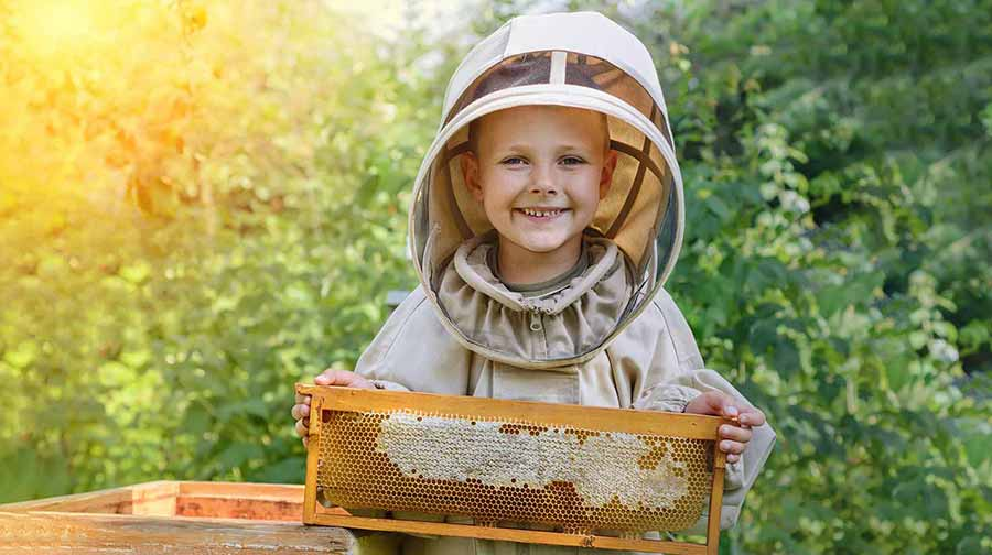 Boy beekeeper holds honeycomb with fresh honey